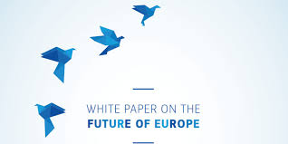 National debate on the White Paper on the Future of Europe held