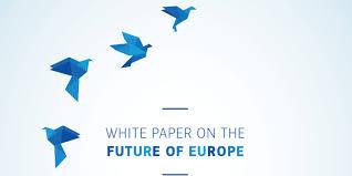 Održana Nacionalna rasprava – Bijela knjiga o budućnosti Europe
