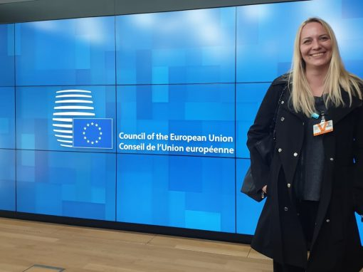 IRMO researcher participated at the meeting in the Council of the EU