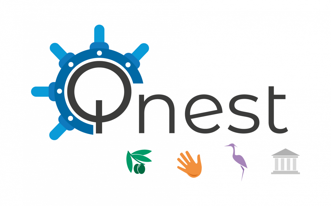 Branding Activity Implementation Services – QNeST