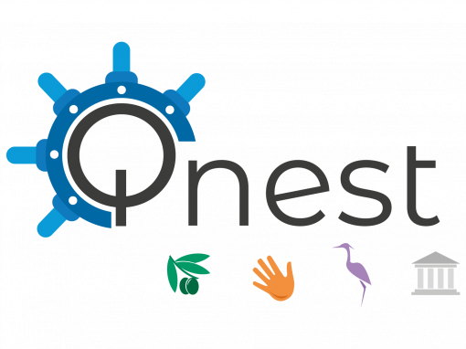 Branding Activity Implementation Services - QNeST